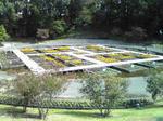 鳥取 花回廊の花壇2