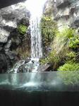 鳥取花回廊の滝2