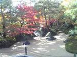 足立美術館庭園1