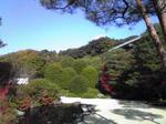足立美術館庭園3