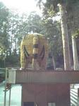 安志賀茂神社のトラ像4