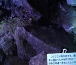 石見銀山龍源寺間歩坑道3
