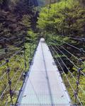現不動滝公園・つり橋