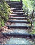 現不動滝公園・階段