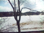 雪景色の播磨中央公園