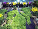 花回廊 温室