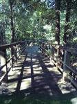 播磨中央公園・四季の庭(遊歩道)