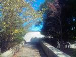 播磨中央公園・展望台までの景色