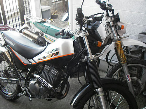 IMGP3094.JPG