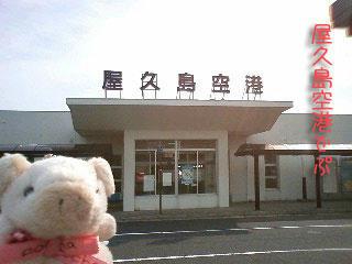 yakusima1.jpg