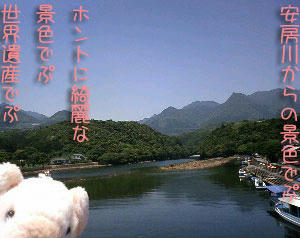 yakusima4.jpg