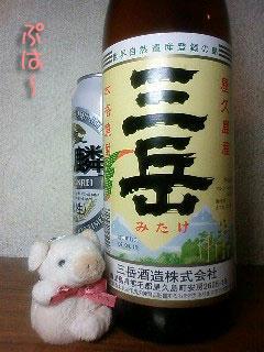 yakusima5.jpg