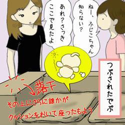 fuji_nikki3.jpg