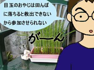 taue1_2.jpg