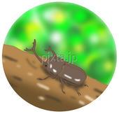 カブトムシ・かぶと虫・カブト虫・甲虫・昆虫・緑・木