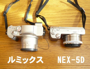 NEX-5D.jpg