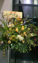 ランティスからお花が
