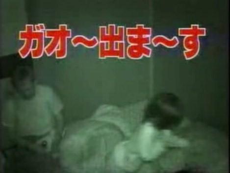 探偵ナイトスクープ~ガォーさん再び