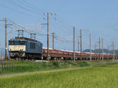 87dbd590.JPG
