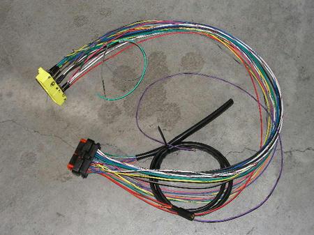 SANY6629.JPG