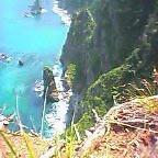 画像:鵜ノ巣断崖