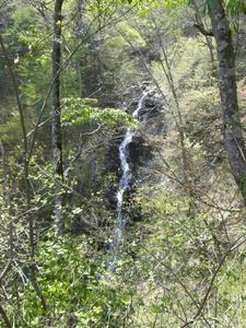 画像:三頭大滝