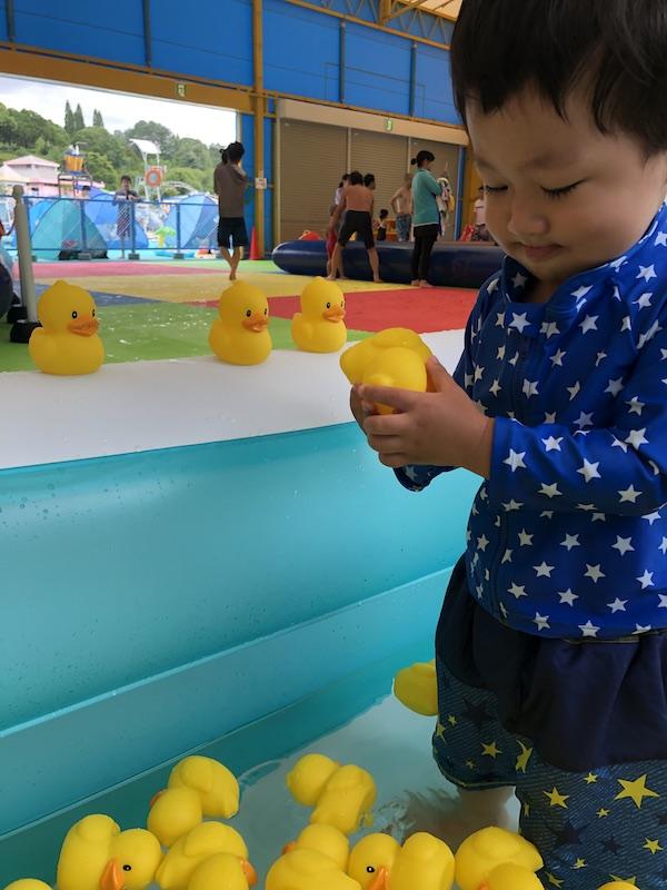 東条 湖 おもちゃ 王国 ブログ