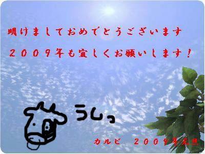 1fa34073.jpg