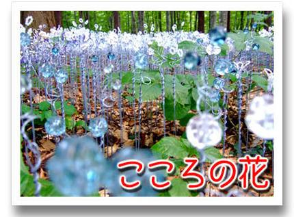 2009_09070037.jpg