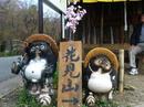 hanamiyama.009_001.JPG