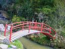 hanamiyama.013_001.JPG