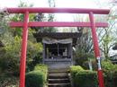 hanamiyama.018_001.JPG