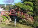 hanamiyama.024_001.JPG