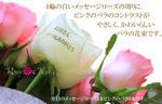 hahanohi-gift1.jpg