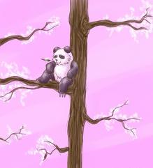Spring scenery panda
