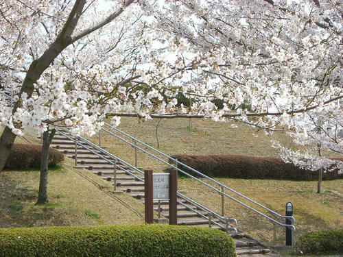 20080406_Narita_12.JPG