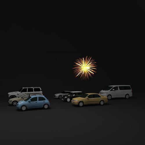 20081105_Fireworks_002.JPG