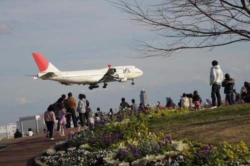 20081221_Narita_001.jpg