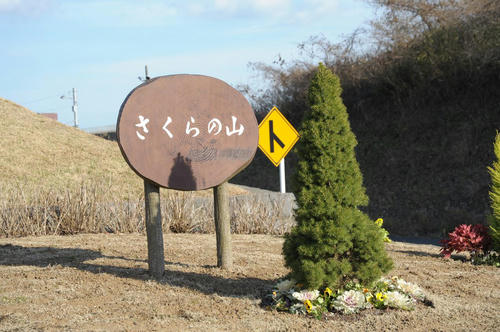 20081221_Narita_080.jpg
