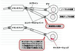 APIO-FAQ.jpg