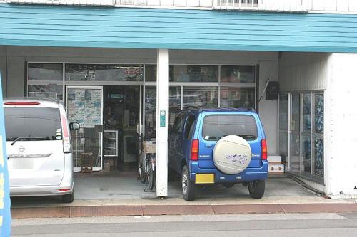 akita-2.jpg