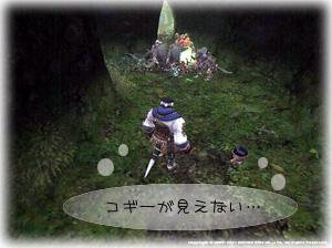 鱗祭り071104-2.jpg