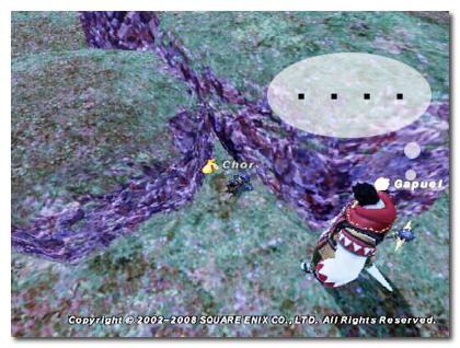 ベドー探検080508-1.jpg