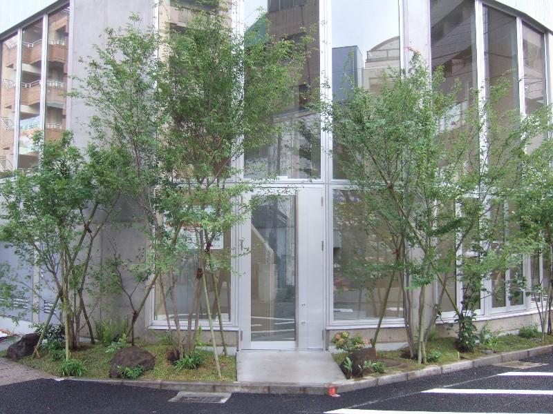 """画像ファイル """"http://file.nishikoku.blog.shinobi.jp/DSCF2185.JPG"""" は壊れているため、表示できませんでした。"""