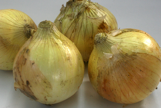 top_onion.jpg