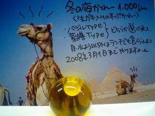 カレーの店うどん「冬の夜カレー2007」カード