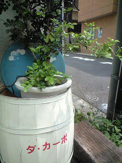 ダ・カーポ (2008/8/2)