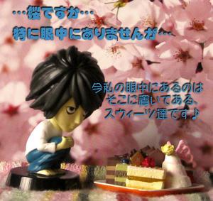 …桜ですか…