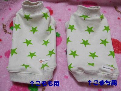 2008_03090007.JPG