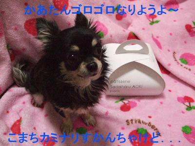 2008_03140006.JPG